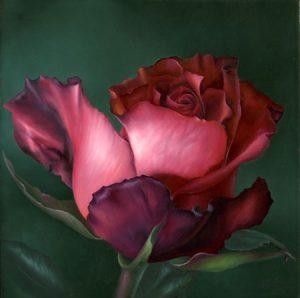 Katie's Rose by Cheri Rol