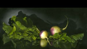 Late Harvest by Cheri Rol