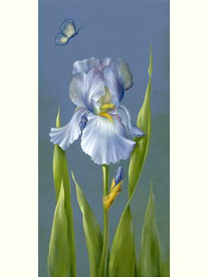 Blue Violet Iris by Cheri Rol