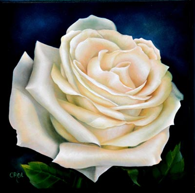 Creamsicle the Rose by Cheri Rol